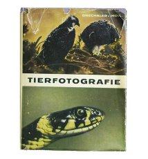 Aus der Praxis der Tierfotografie
