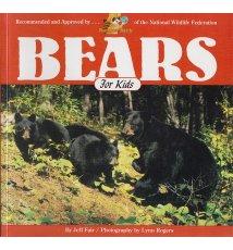 Bears For Kids