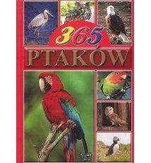 365 ptaków