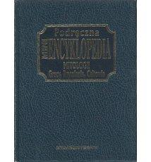 Podręczna mini encyklopedia mitologii