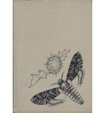 Motyle polskie