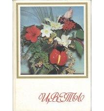 Kwiaty [w j.ros.]