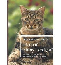 Jak dbać o koty i kocięta?