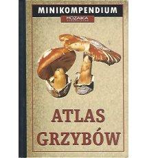 Atlas grzybów. Minikompendium