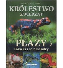 Królestwo zwierząt. Traszki i salamandry T.7