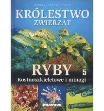 Królestwo zwierząt. Ryby kostnoszkieletowe T.5