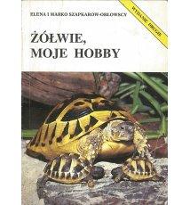 Żółwie, moje hobby